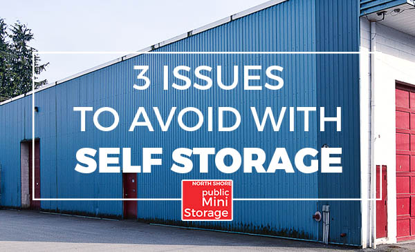self storage, storage facility, issues