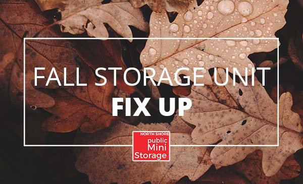 fall storage, leaves, fall