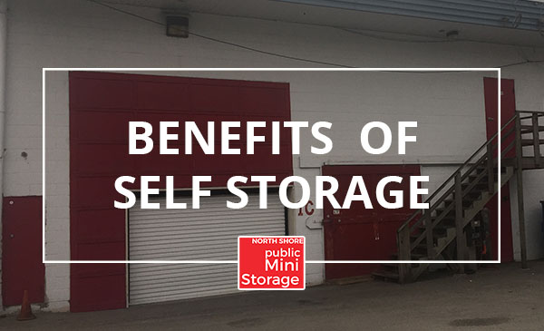 benefits, storage unit
