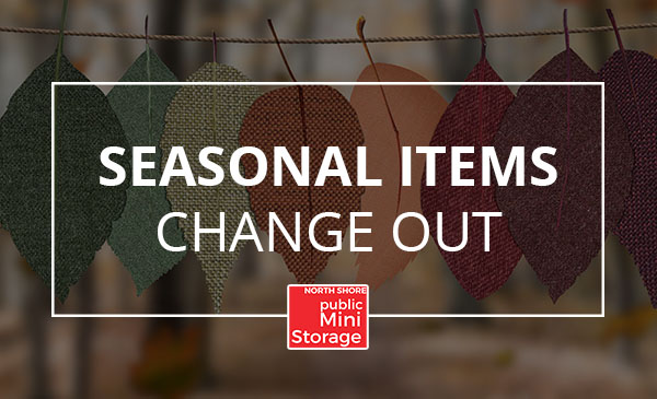 seasonal storage, items