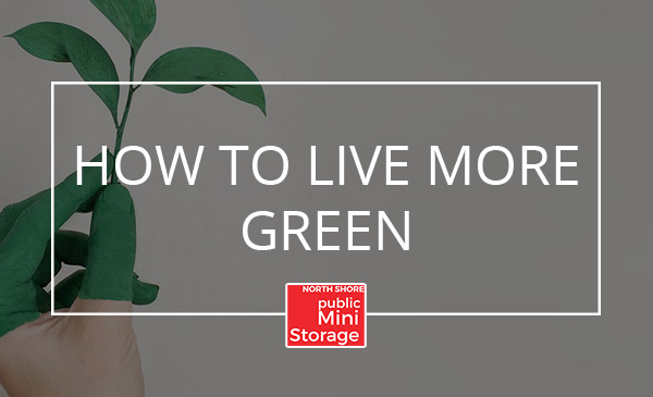 live green, tips